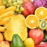 Metta la frutta e le verdure Immagine Stock