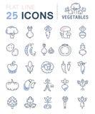 Metta la linea piana verdure di vettore delle icone Fotografia Stock Libera da Diritti