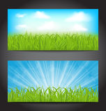 Metta le carte di estate con erba, sfondi naturali Fotografia Stock Libera da Diritti