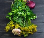 Metta le erbe del giardino per marinare Immagini Stock