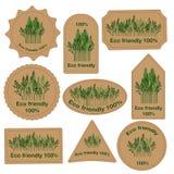 Metta le etichette con 100% ecologico Immagini Stock