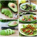 Metta le insalate con l'avocado fresco Fotografia Stock