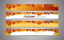 Metta le insegne per l'autunno dei siti Web o il fondo di caduta con il ramo della sorba e delle foglie di acero Vendita o di nuo illustrazione vettoriale