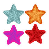 Metta le stelle marine colorate Animali dell'oceano Illustrazione di vettore Fotografie Stock