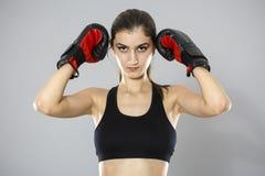 Metta in mostra i guantoni da pugile della giovane donna, fronte dello sho dello studio della ragazza di forma fisica Fotografia Stock