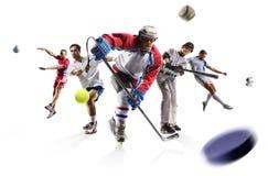 Metta in mostra il calcio ecc del hockey su ghiaccio di baseball di calcio del tennis di pallavolo del collage fotografia stock