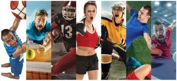 Metta in mostra il collage circa calcio, il football americano, la pallacanestro, il tennis, il pugilato, il hockey su prato, pin immagini stock libere da diritti