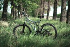 Metta in mostra la bici sull'erba nel parco immagine stock
