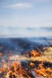 Metta su fuoco Immagine Stock