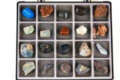 Metta una collezione di rocce, minerali nella scatola Fotografia Stock