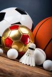 Mette in mostra gli accessori pagaie, bastoni, palle e più Immagine Stock