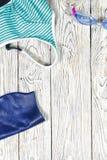 Mette in mostra gli accessori per nuotare Immagine Stock