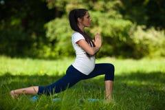 Mette in mostra la giovane donna incinta. Immagine Stock Libera da Diritti