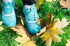 Mette in mostra le scarpe delle donne Immagini Stock Libere da Diritti