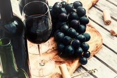 Mettendo con le bottiglie di vino rosso, del vetro di vino e dell'uva Fotografie Stock Libere da Diritti