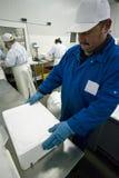 Mettendo ghiaccio sui filetti di pesce Fotografia Stock Libera da Diritti