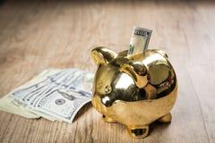 Mettendo i 100 dollari in un porcellino salvadanaio Fotografie Stock Libere da Diritti