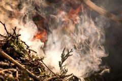 Mettez à feu le feu Macro tir de feu, de charbon blanc et de feu de fumée, chauds, de rougeoyer Photographie stock