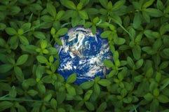 Mettez à la terre le globe dans l'herbe verte fraîche, éléments de cette image fournissent Photographie stock