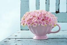 Mettez en forme de tasse complètement de l'hortensia rose sur la chaise de vintage Photos stock