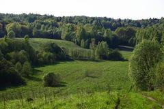 Mettez en place avec la forêt et les collines sur l'horizon Photos stock