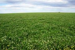 Mettez en place contre la terre de ciel, d'agriculture et de ferme avec le ciel et les nuages dans Victoria, Australie Photographie stock