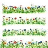 Mettez en place les fleurs dans l'herbe verte d'été sur le vert pourpre jaune bleu rouge lumineux franc de peinture d'aquarelle d Photos libres de droits