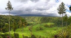 Mettez en place les terrasses et montez Agung, Bali Photographie stock
