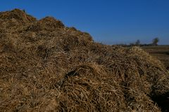 Mettez en place, les terres arables est préparé pour semer des cultures À l'arrière-plan, loin forêt, charrue de tracteurs photographie stock