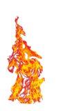 Mettez le feu à la flamme d'isolement sur le fond d'isolement par blanc - beau yel Image libre de droits