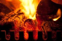 Mettez le feu au bois et aux cônes brûlants dans un brûleur de rondin Images stock