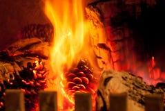 Mettez le feu au bois et aux cônes brûlants dans un brûleur de rondin Images libres de droits