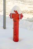 Mettez le feu au coq dans la neige dans le Bulgare Pomorie, hiver Photos stock