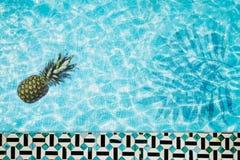 Mettez le flotteur en commun, anneau flottant dans une piscine bleue régénératrice avec des ombres de feuille de palmier dans l'e Images libres de droits