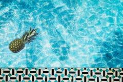 Mettez le flotteur en commun, anneau flottant dans une piscine bleue régénératrice avec des ombres de feuille de palmier dans l'e Photos libres de droits