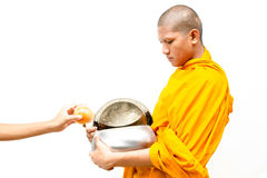 mettez les offres de nourriture dans une cuvette d'aumône de moines bouddhistes. photo libre de droits