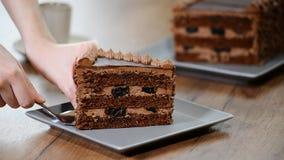 Mettez un morceau de gâteau de chocolat dans un plat banque de vidéos