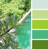 Mettez une vue en commun supérieure échantillons de palette de couleurs tonalités en pastel images stock