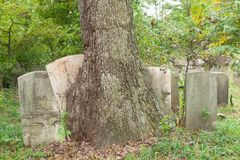 Metuchen Koloniale Begraafplaats Stock Afbeelding
