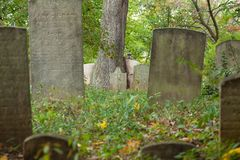 Metuchen Koloniale Begraafplaats Royalty-vrije Stock Foto