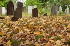 Metuchen koloniinvånarekyrkogård Royaltyfri Bild