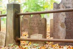 Metuchen koloniinvånarekyrkogård Royaltyfria Foton