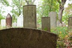 Metuchen koloniinvånarekyrkogård Royaltyfri Fotografi