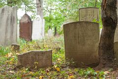 Metuchen kolonisty cmentarz Obrazy Stock