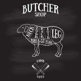 Metzger schneidet Entwurf des Lamms oder des Hammelfleisches Lizenzfreie Stockfotografie
