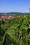 Metzingen - Outlet-City Stock Photos