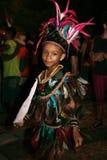 meu празднества масленицы bumba Бразилии boi стоковая фотография