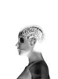 Meu cérebro Fotos de Stock Royalty Free