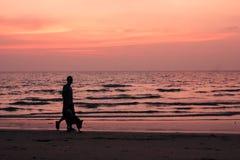 Meu melhor amigo na praia Fotografia de Stock Royalty Free