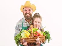 Meu pai ? fazendeiro Vegetais org?nicos da explora??o agr?cola da fam?lia Fazendeiro r?stico farpado do homem com crian?a r imagens de stock